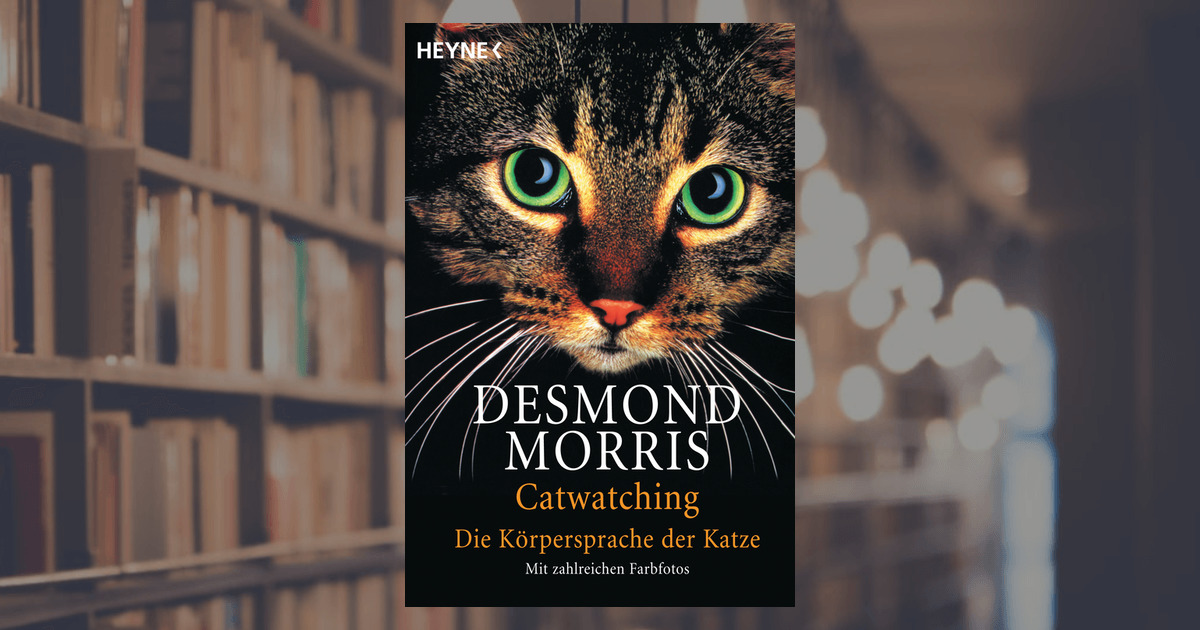 desmond morris catwatching heyne verlag taschenbuch. Black Bedroom Furniture Sets. Home Design Ideas
